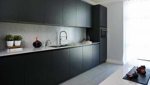 Discovery Dock Kitchen neutral walls with plain black modern kitchen.