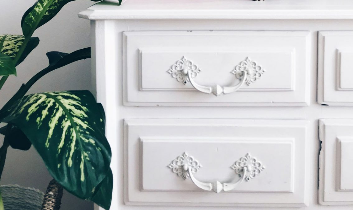 White Drawers with handles next to plant