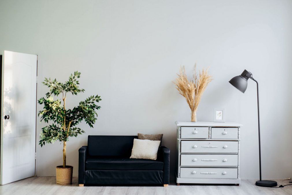 Simple Modern Interior Design sofa drawers and plant
