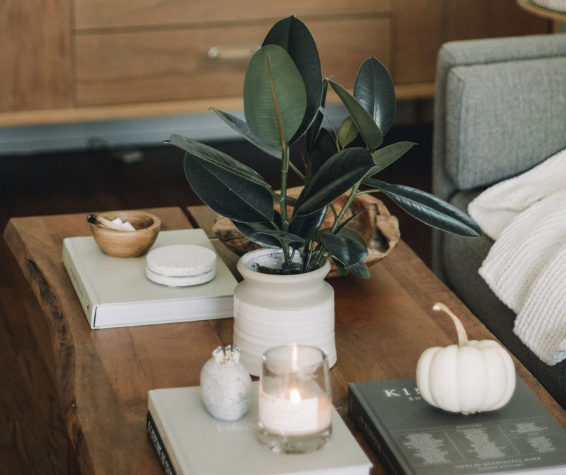 Plant on Table with candles and books