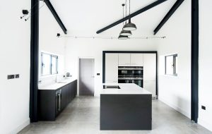 Monochrome Industrial modern barn kitchen interior design